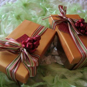 Le 3 migliori idee regalo per chi ama il giardinaggio